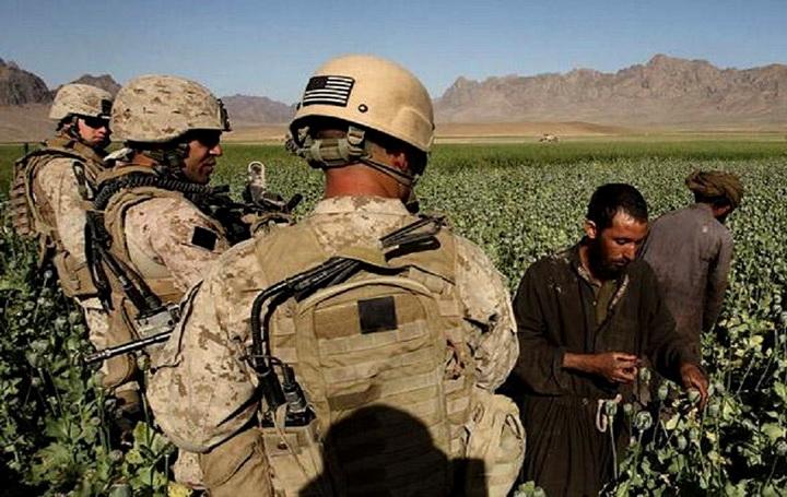 Us-Marine-patrol-opium 34