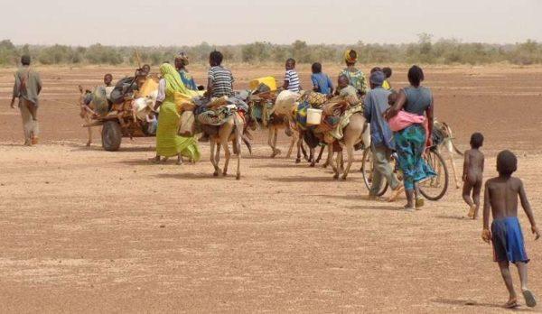 SENZACIONALNO OTKRIĆE MLADIH SRBA: Ovako može da se nahrani Afrika, a kamoli Srbija