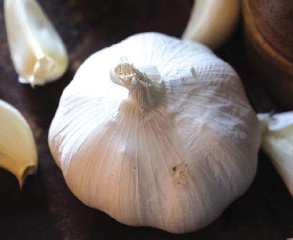 Бели лук – чувар имунитета и артерија
